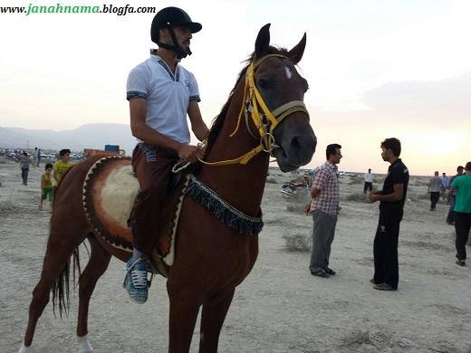 مسابقات اسب دوانی قلندران به مناسبت هفته دولت